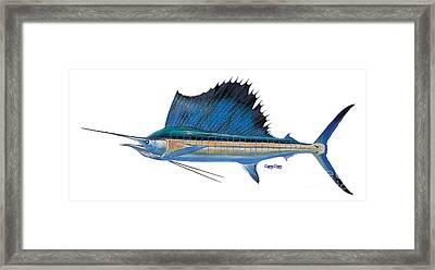 Sailfish Framed Print by Carey Chen