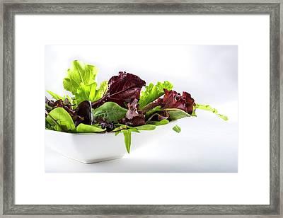 Salad Leaves In White Bowl Framed Print by Aberration Films Ltd