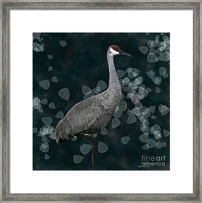 Sandhill Crane On Leaves Framed Print by Megan Dirsa-DuBois