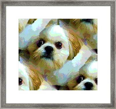Sarah Framed Print by Carolyn Repka