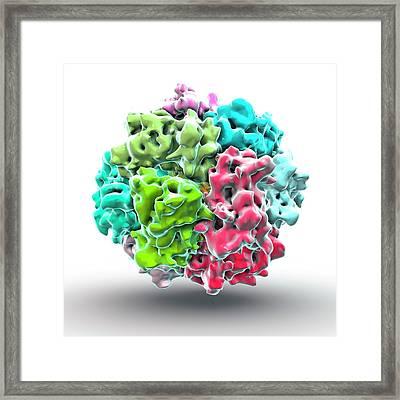Sars Coronavirus Framed Print by Animate4.com/science Photo Libary