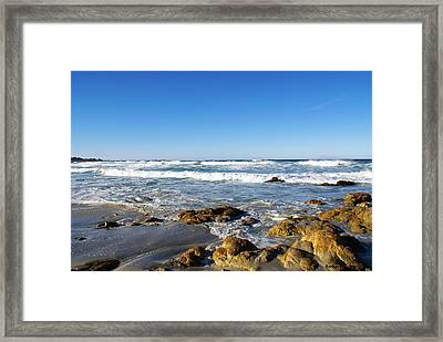 Scenic View Along 17 Mile Drive Framed Print by Barbara Snyder