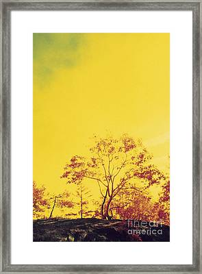 Scorched Tree, Conceptual Image Framed Print by Alan Sirulnikoff