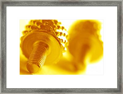Screw Framed Print by Michal Bednarek
