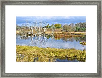 Seasons End Framed Print by Frozen in Time Fine Art Photography