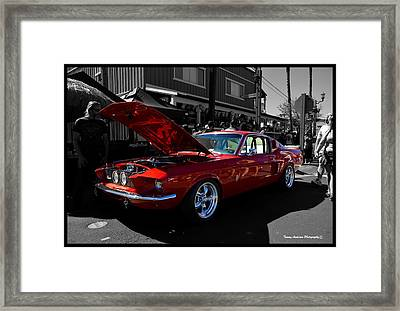 Shelby Gt 500 Mustang Framed Print by Tommy Anderson
