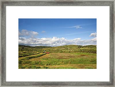 Silage Making,near Bantry,county Cork Framed Print by Panoramic Images