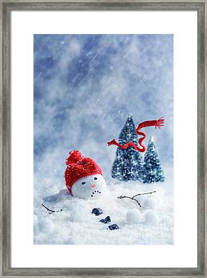 Snowman  Framed Print by Amanda And Christopher Elwell