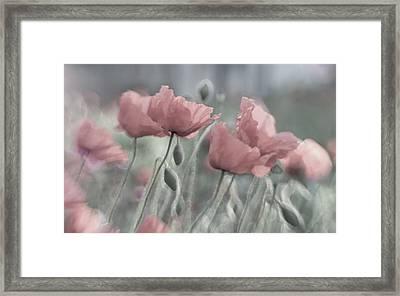 Softly Framed Print by Anne Worner