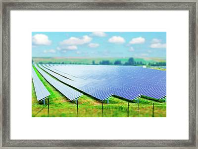 Solar Farm Framed Print by Wladimir Bulgar