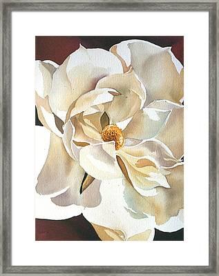 Southern Magnolia Framed Print by Alfred Ng