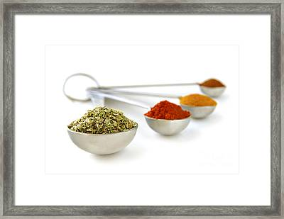 Spices In Measuring Spoons Framed Print by Elena Elisseeva