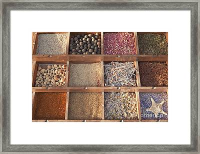 Spices Framed Print by Roberto Morgenthaler