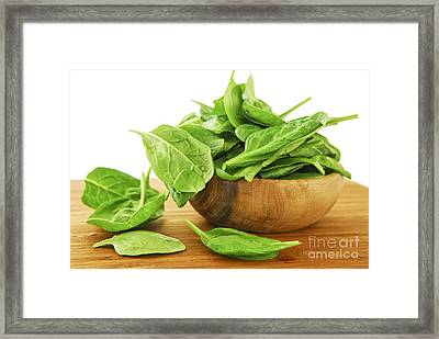 Spinach Framed Print by Elena Elisseeva