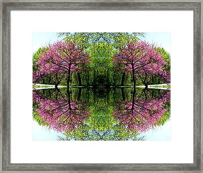 Spring Framed Print by Dale   Ford