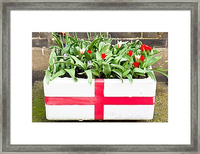 Spring Flowers Framed Print by Tom Gowanlock