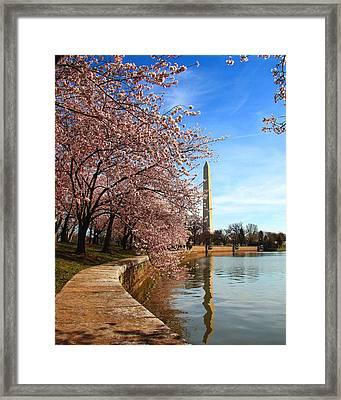 Spring Framed Print by Mitch Cat