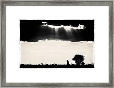 Stormy Silhoettes Framed Print by Mike Gaudaur
