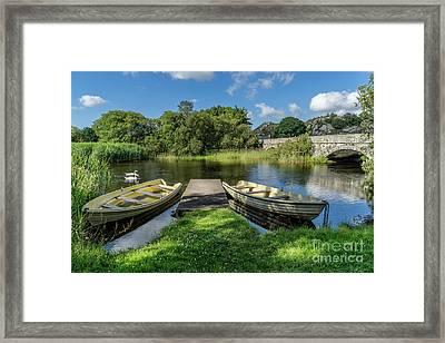 Swan Lake Framed Print by Adrian Evans
