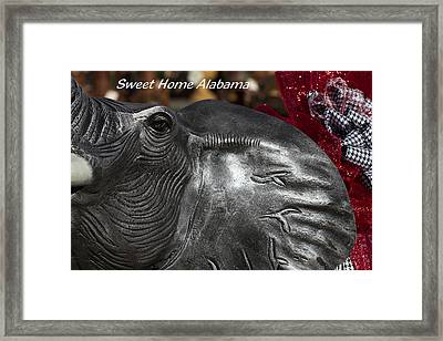 Sweet Home Alabama Framed Print by Kathy Clark
