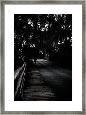 Swingshift Framed Print by David Fox