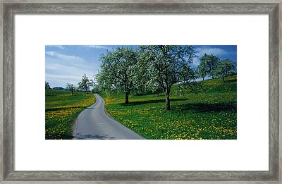 Switzerland, Zug, Road Framed Print by Panoramic Images