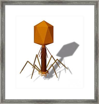 T4 Bacteriophage, Artwork Framed Print by Art for Science
