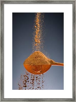 1 Tablespoon Cinnamon Framed Print by Steve Gadomski