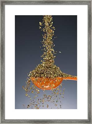 1 Tablespoon Oregano Framed Print by Steve Gadomski