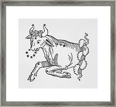 Taurus  Framed Print by Italian School