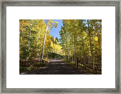 Telluride Colorado Fall Framed Print by Michael J Bauer