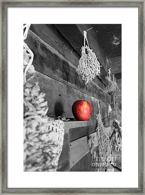 The Apple Framed Print by Laurinda Bowling