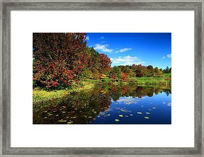 The Beautiful Fall Framed Print by Paul Ge