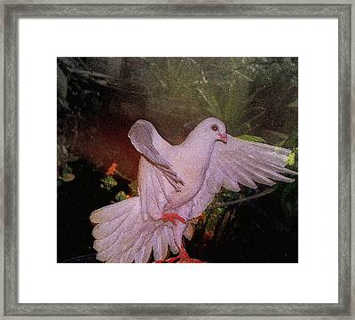 The Dance Framed Print by YoMamaBird Rhonda