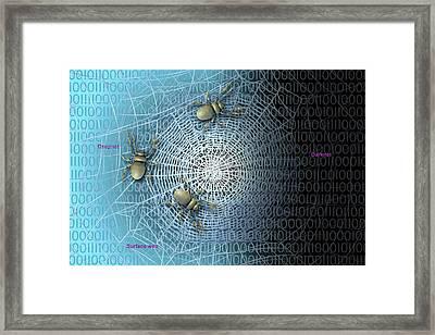 The Darknet Framed Print by Carol & Mike Werner