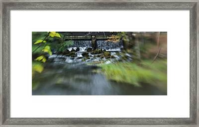 The Falls Framed Print by Shawn Wood