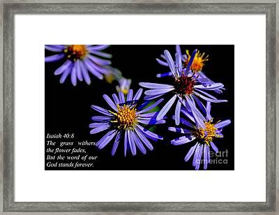 The Flower Fades Framed Print by Thomas R Fletcher