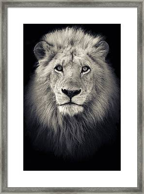The King Framed Print by Mario Moreno