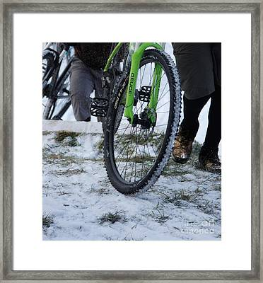 The Mule Train  Framed Print by Steven  Digman