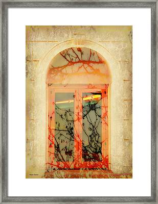 The Other Side Framed Print by Barbie Guitard