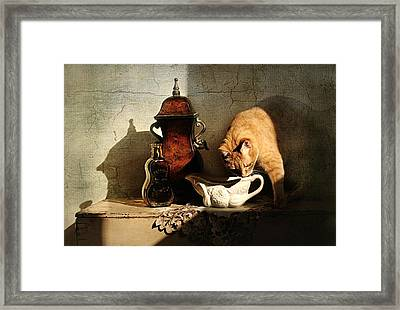The Perfect Storm Framed Print by Diana Angstadt