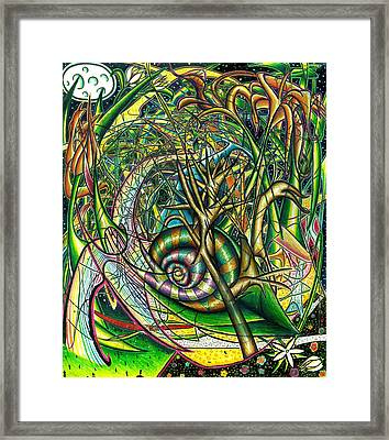 The Snail Framed Print by Shawn Dall