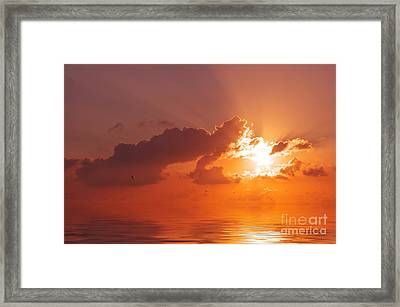The Sunset Framed Print by Angela Doelling AD DESIGN Photo and PhotoArt
