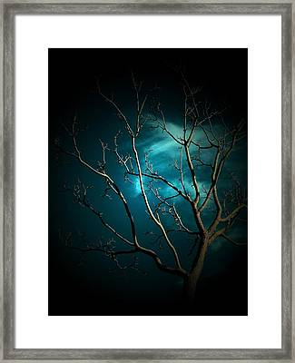 The Tree Captures Nightmares Framed Print by Donatella Muggianu