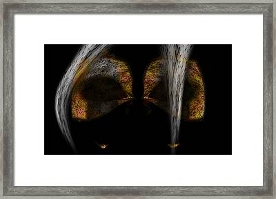 The Way Of The Ninja. Framed Print by Christopher Gaston