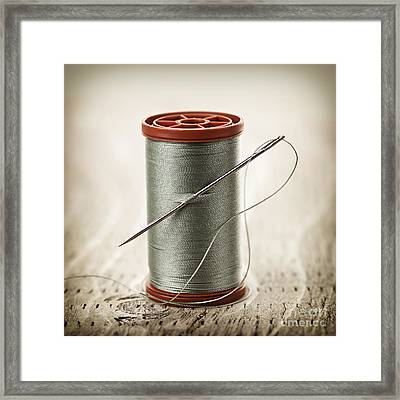 Thread And Needle Framed Print by Elena Elisseeva