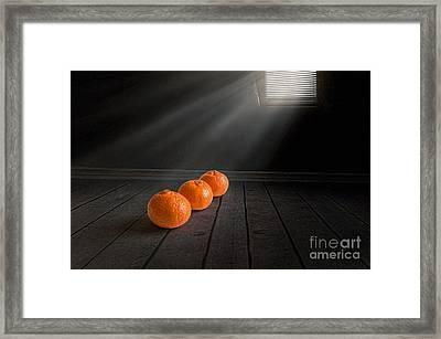 Three Framed Print by Veikko Suikkanen
