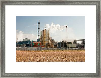 Titanium Dioxide Plant Framed Print by Ashley Cooper