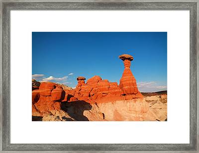 Toad Stools  Framed Print by Jeff Swan