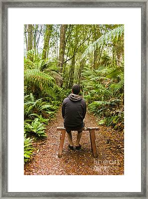 Travel Man Sitting In A Green Lush Fern Forest Framed Print by Jorgo Photography - Wall Art Gallery
